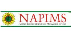 napins-01